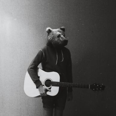 Animals in my room - Bear