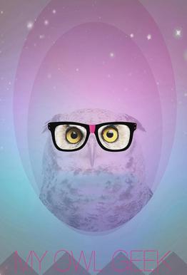 My Owl Geek -Acrylglasbild
