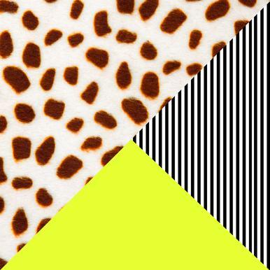 Cheetah Stripe  Neon Aluminium Print