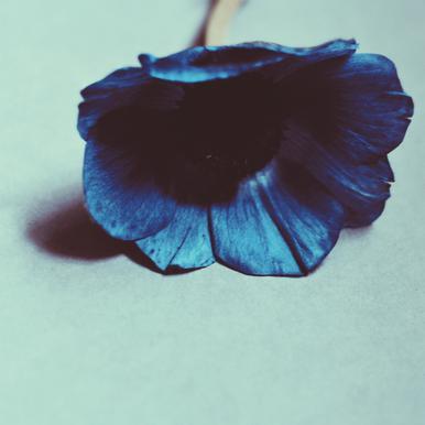 Blue Impression sur alu-Dibond
