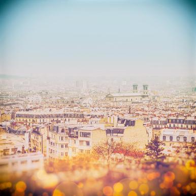 The Roof of Paris
