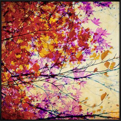 Autumn 5 - Poster im Kunststoffrahmen