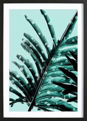 Leaves 2 Framed Print