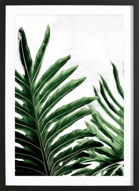 Leaves 1 - Poster in houten lijst