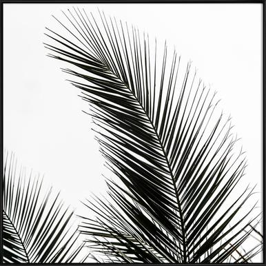Palm Leaves 1 - Poster in Standard Frame