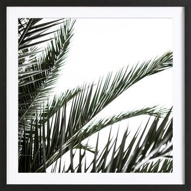 Palm Leaves 2 -Bild mit Holzrahmen