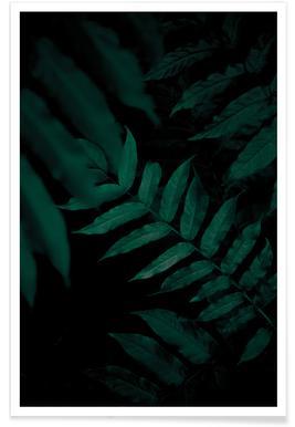 Dark Leaves 2