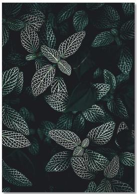 Dark Leaves 3 Notebook