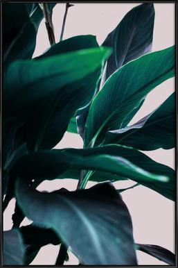 Palm Leaves 4 Framed Poster