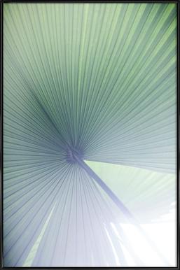 Palm Leaves 5 Framed Poster