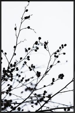 Winter Silhouettes 1