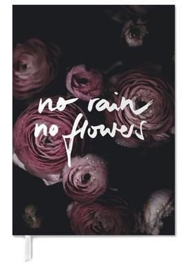 No Rain No Flowers agenda