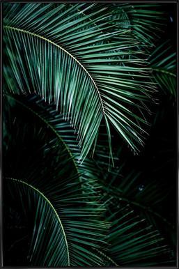 Palm Leaves 9 Poster i standardram
