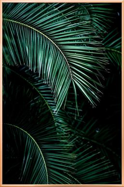 Palm Leaves 9