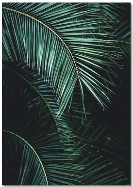 Palm Leaves 9 Anteckningsblock