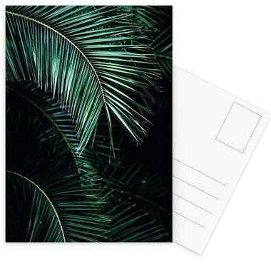 Palm Leaves 9 Vykort satt