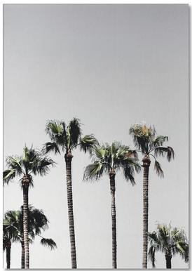 Palm Trees 5 Anteckningsblock