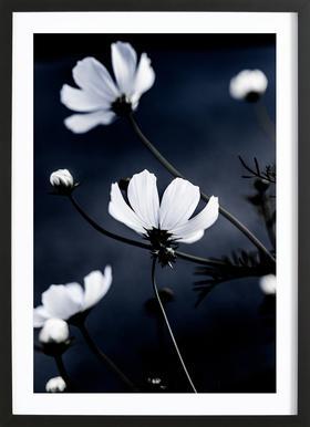 Wild Flowers 1 Poster i träram