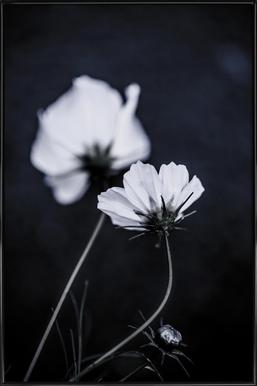Wild Flowers 2 Poster i standardram