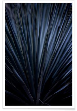 Blue Straws 2 poster