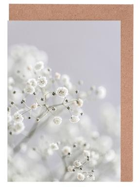Baby's Breath Greeting Card Set