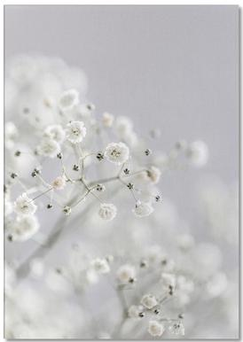 Baby's Breath notitieblok
