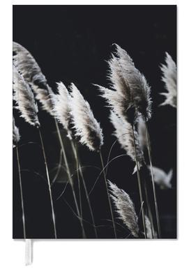 Grass 4 agenda