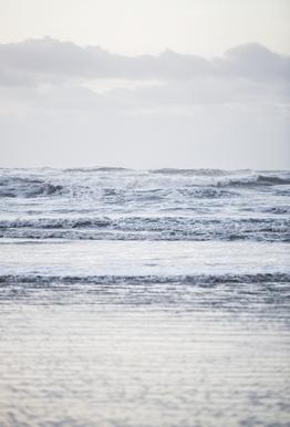 The Sea -Alubild