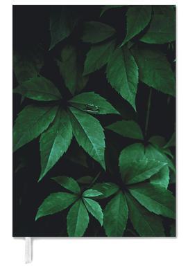 Dark Leaves 7