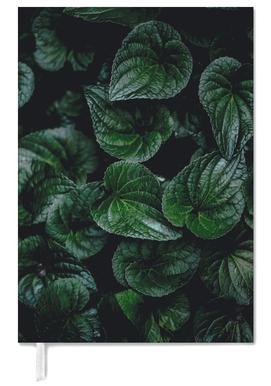 Dark Leaves 8