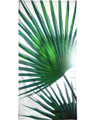 Palm Leaves 19