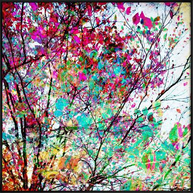 Autumn 8 - Poster im Kunststoffrahmen
