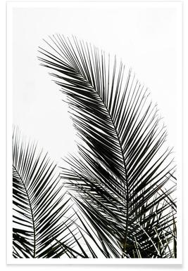 Palm Leaves 1 - Premium poster