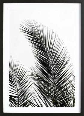 Palm Leaves 1 - Poster in Wooden Frame