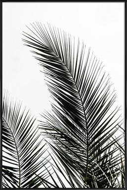 Palm Leaves 1 -Bild mit Kunststoffrahmen