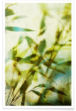 Bamboo 3 Poster