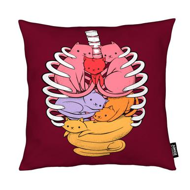 Anatomicat