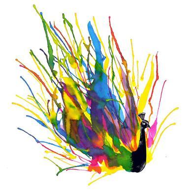 Colorful Peacock Acrylic Print