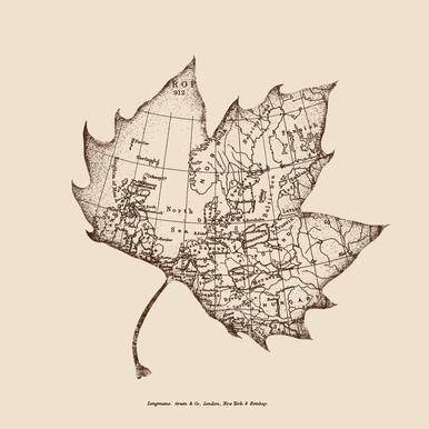 Travel With The Wind Aluminium Print