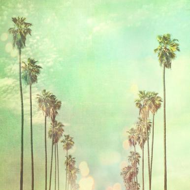 La La Land -Leinwandbild