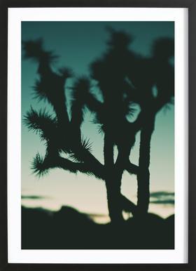 Last Night I Dreamt of the Desert No.1