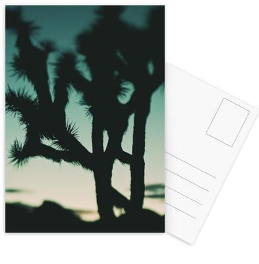 Last Night I Dreamt of the Desert No.1 Postcard Set