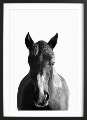 Horse -Bild mit Holzrahmen