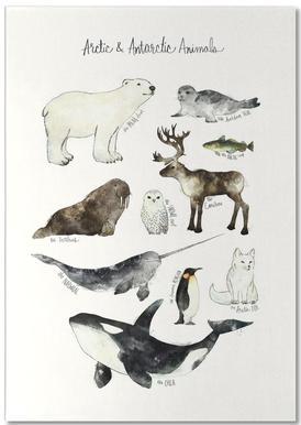 Arctic and Antarctic Animals notitieblok