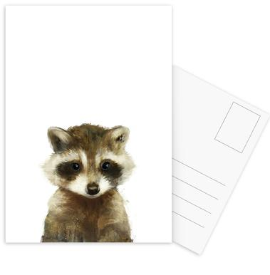 Little Raccoon Postcard Set
