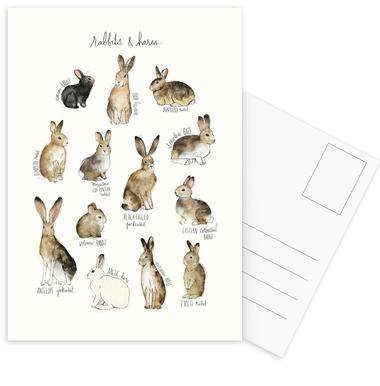 Rabbits and Hares Postcard Set