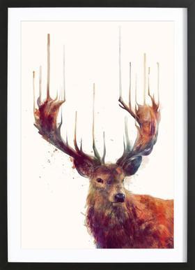 Red Deer -Bild mit Holzrahmen