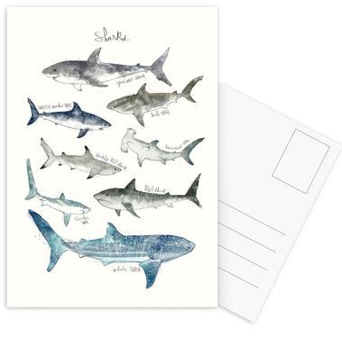 Sharks -Postkartenset
