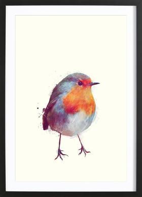 Winter Robin -Bild mit Holzrahmen
