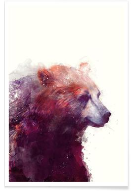 Bear Profile Illustration Poster